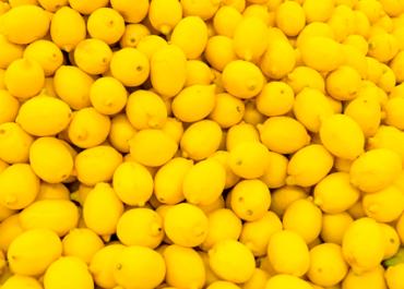 limon-persa